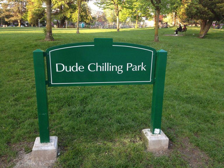 Dude Chilling Park