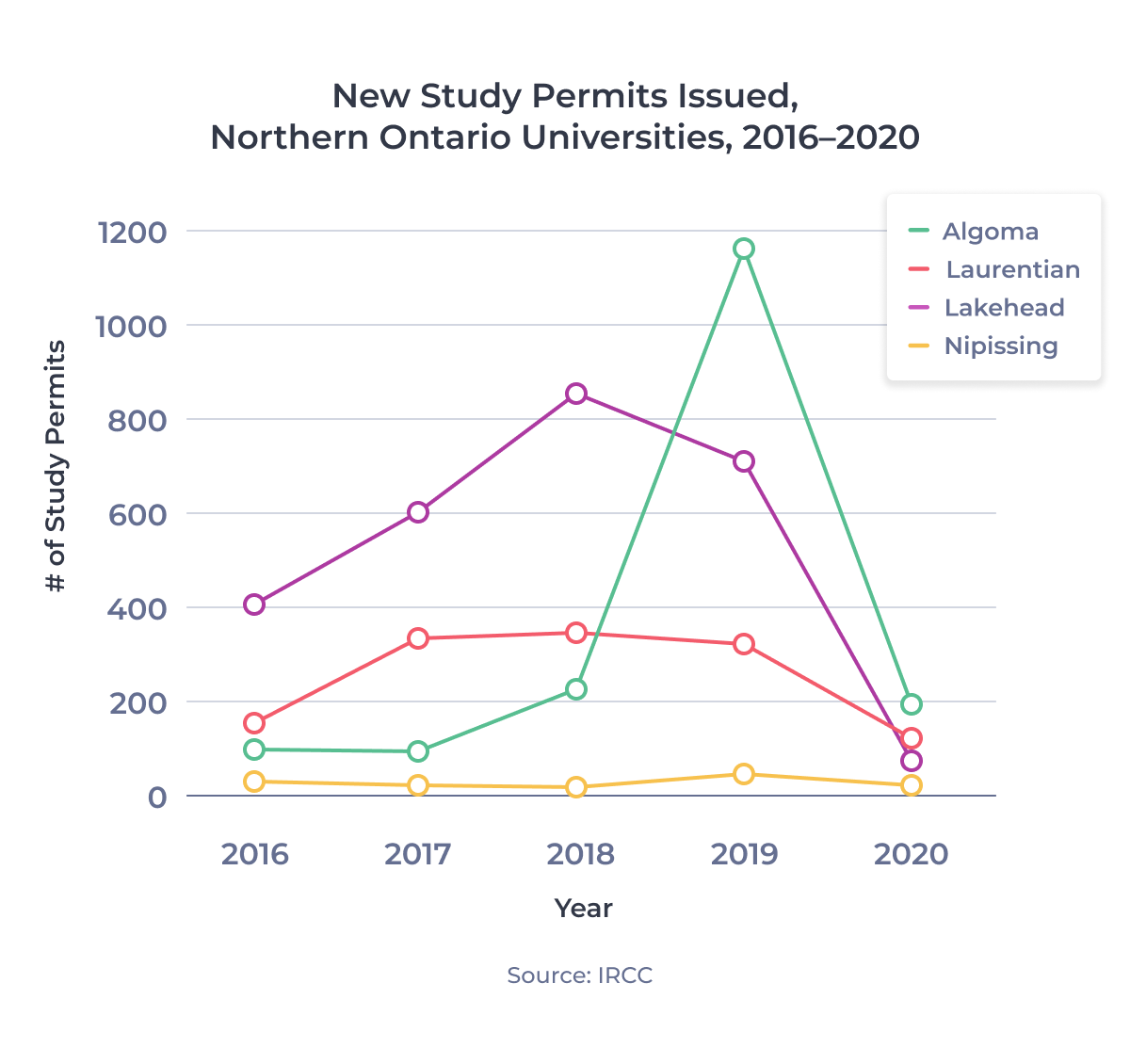 Line chart showing new study permits issued for Northern Ontario universities between 2016 and 2020. Examined in detail below.