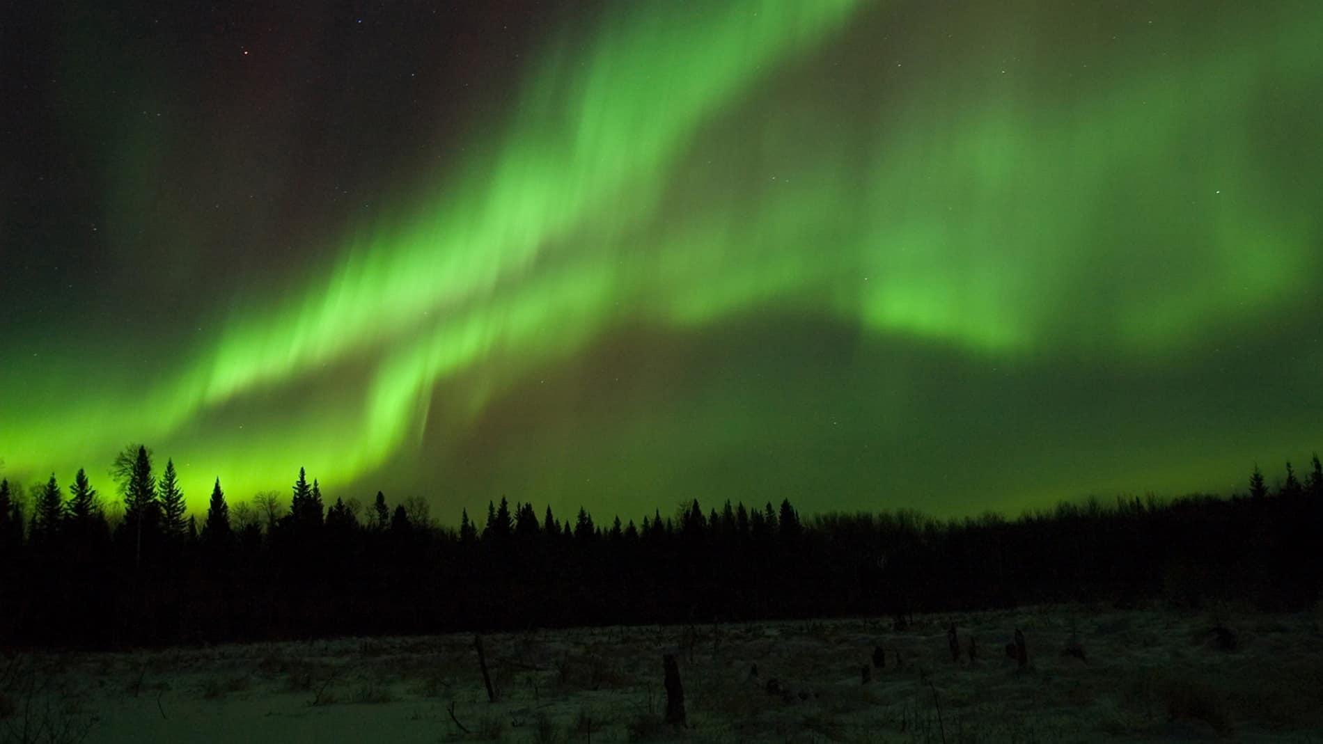 Photograph of Saskatchewan's living sky